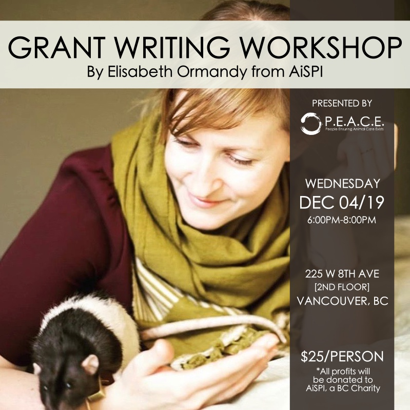 GRANT WRITING WORKSHOP WITH ELISABETH ORMANDY FROM AISPI