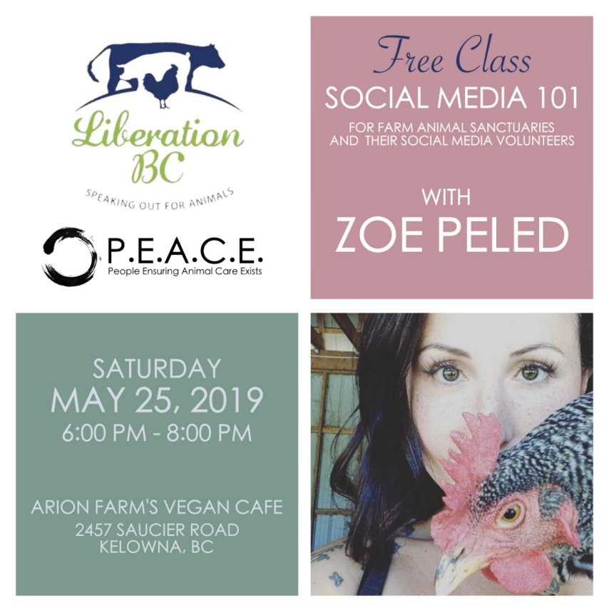 SOCIAL MEDIA 101 FOR FARM ANIMAL SANCTUARIES AND THEIR VOLUNTEERS  MAY 25, 2019 KELOWNA, BC