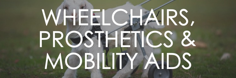 WHEELCHAIRS, PROSTHETICS AND MOBILITY AIDS