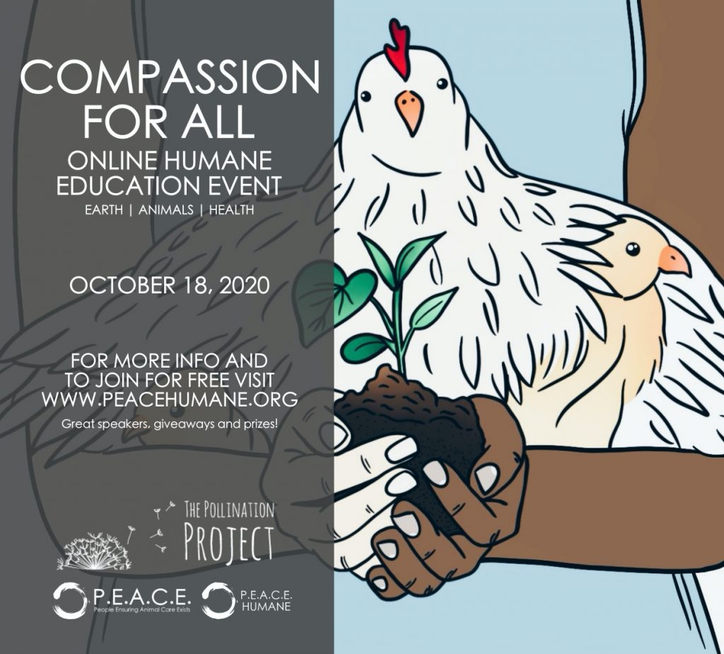 COMPASSION FOR ALL