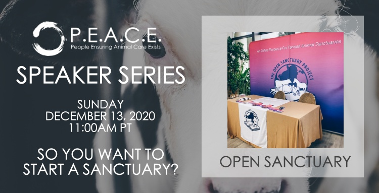 THE OPEN SANCTUARY PROJECT | SO YOU WANT TO START A SANCTUARY?