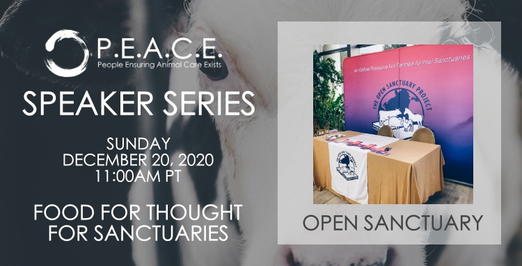 THE OPEN SANCTUARY PROJECT | FOOD FOR THOUGHT FOR SANCTUARIES