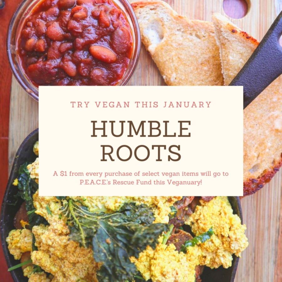 TRY VEGAN THIS JANUARY AT HUMBLE ROOTS - A $1 FROM EVERY PURCHASE OF SELECT VEGAN ITEMS WILL GO TO PEACE'S RESCUE FUND THIS VEGANUARY!